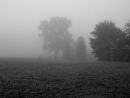 S.S. Foggy Scene - 1 by shudder-stock