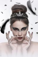 BLACK SWAN(CARNIVAL INSPIRED)3 by VCRetouching