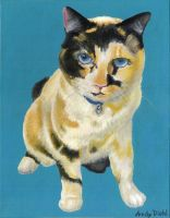 Cookie the Calico Cat by andydiehl