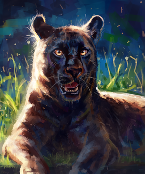 Black panther by AlaxendrA