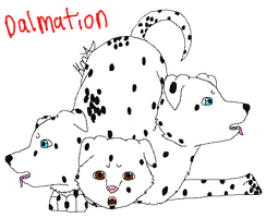 Dalmation Cerberus (TAKEN) by ki-neko-animura