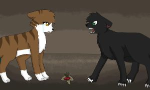 Hollyleaf - And you expect me to forgive you? by Yin-Meep