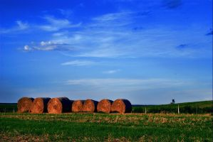 Hay bale by rdevill