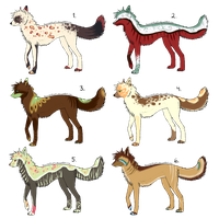 Wolf Adopts CLOSED by SummerAdopts