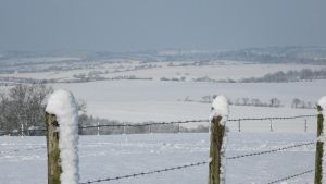 Normandy's Snow.. by Cpl-Highway