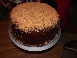 Death by Chocolate and Peanut Butter cake by ayarel