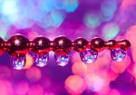 Love for bokeh by pqphotography