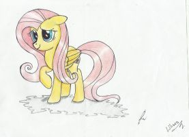 Request-Fluttershy by Rosii16