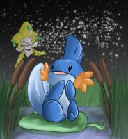 +Mudkips Wish+ by Sprinkling-stars