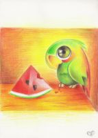 A parrot by Annetthe