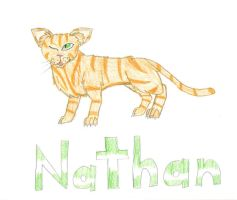 Introducing Nathan by AmiliaLongTail