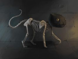 kitty cat...sort of by lancer-idenoure