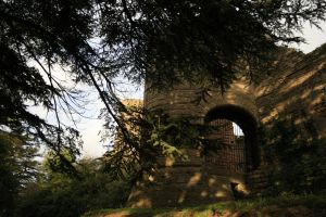 More of Caldicot Castle 3 by Tinap