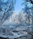 Frosty trees in winter wonderland by KariLiimatainen