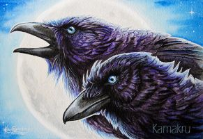 Two Ravens by Kamakru