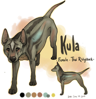 Kula - Thai Ridgeback by Colonels-Corner