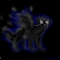 Willow the spirit pup by iW-O-L-F
