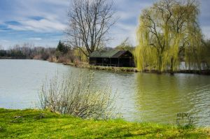 Spring by XanaduPhotography