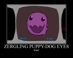 StarCrafts:  Zergling Puppy Eyes by Onikage108