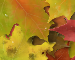 Fall leaves by pSarahdactyls