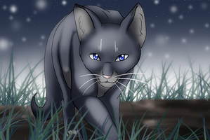 Bluestar's Hunt by Aira90