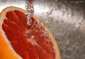 The grapefruit by self-contained