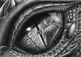 Eye of the Fight by Mitheriel