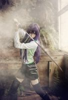 High School Of The Dead Saeko Busujima cosplay by twndomn