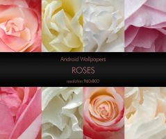 Android Wallpaper Pack 01 Roses by freyiathelove