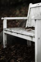 Lonely Bench by fL0urish