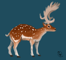 Fallow Deer by painted-flamingo