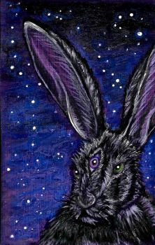 The Mad March Hare by Lionsong