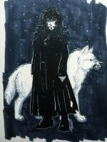 Lord Snow and his White Shadow by fuzzypinkmonster
