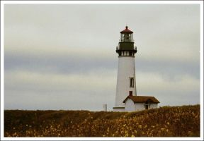 Oregon Lighthouse by thegoots