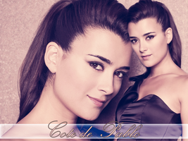 Cote de Pablo wallpaper by Nyssa-89