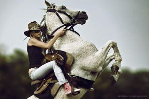 Horse Rider XI Crop by 54ka