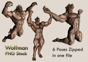 Wolfman Stock Pack by Roys-Art