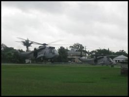 Navy Sea Kings at Hospital by RedtailFox