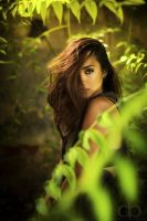 Jungle Fever by Dapicture