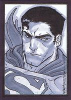 Superman Sketch Card by jeffwamester