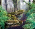 Enchanted forest spot premade BG by StarsColdNight