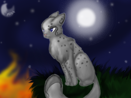 Look before you Leap, Ashfur by Moonblizzard