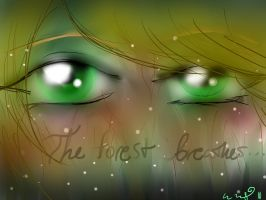 The Forest and Fane by Nach4ever