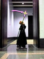 marluxia cos_AnimeBoston 2006 by BlackKrogoth