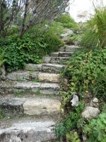 stone stairs by silver80