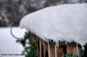 First Snow2 by RobyRidge