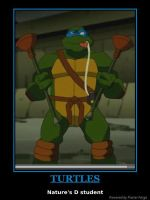 TMNT Demotivational 002 by GhostlyProductions