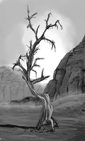 Rocky tree photo study by Chrisfraserhd
