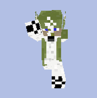 Free Minecraft skin Wolf Link (TP) preview by jmillart