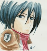 Mikasa color sketch by lautaro-lf